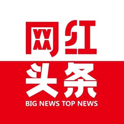 i网红头条站长之家写作平台