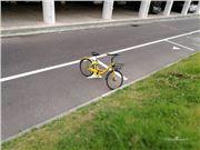 共享单车 共享单车行程显示骑到非洲