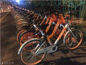 摩拜 青桔单车 小蓝单车 共享单车