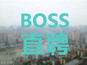 BOSS直聘 招聘網站 網絡招聘