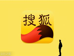 搜狐 网红 造星