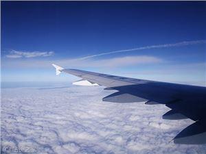 临时乘机证明系统 临时乘机证明 航空 飞机 民航 身份证