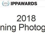 用苹果记录世界 2018IPPA获奖名单公布