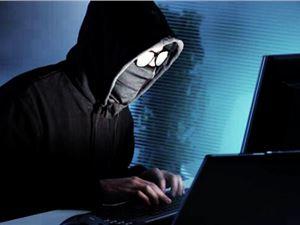 首都网警 12306用户数据 12306用户数据泄露