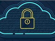 开源工具 数据安全
