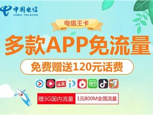 中国电信 电信大王卡 电信9元大王卡 电信9元大王卡套餐申请