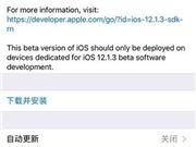 苹果iOS 12.1.3开发者预览版推送 专注微小更改和错误修复