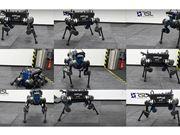 机器狗 机器人
