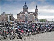 自行车 荷兰 无人驾驶汽车 受阻