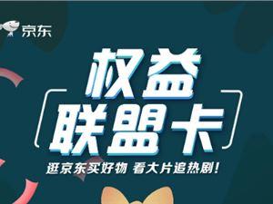京东 中国电信 电信卡套餐 权益联盟卡