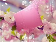 七彩虹 SSD SL500 SSD 樱花粉
