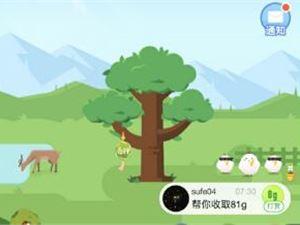 蚂蚁森林 支付宝 春种之旅 植树节 原创