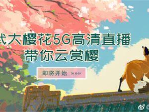 武大樱花5G直播