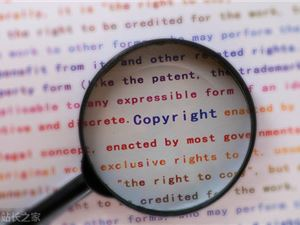 视觉中国 程序员 版权