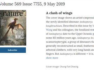 发现膜质翅膀恐龙