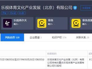 乐视体育拍卖所持重庆乐视体育55%股权