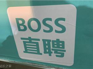 庞晔 赵鹏 智联招聘 求职网站 招聘网站 BOSS直聘融资 BOSS直聘用户
