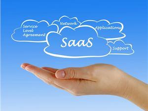软件即服务 软件服务 软件许可证费 SaaS模式 SaaS加速器 SaaS+服务 ASP模式 云计算 社交电商 SaaS贷 产业互联网 电商
