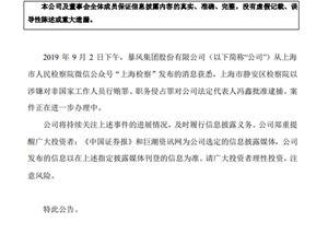 暴风集团 冯鑫