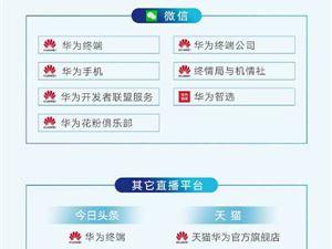 麒麟990 华为IFA2019直播 华为