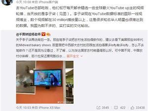 网红 李子柒 自媒体