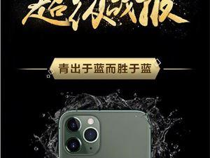 iphone11 iphone销量