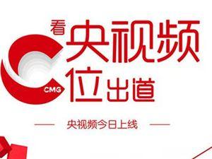 央视频 短视频 5G 新媒体