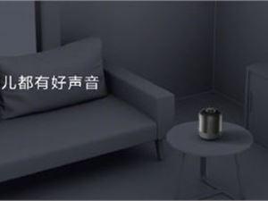 华为SoundX 华为智能音箱 智能音箱