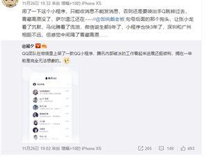 QQ 微信