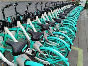 滴滴 青桔单车 共享单车