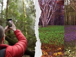 开源工具 动物视觉 图片软件