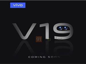 VivoV19
