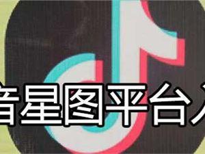 中英文个人简历模板_抖音星图平台入口-站长之家